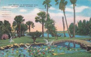 Florida Daytona Beach Foot Bridge In Waterfront Park 1952