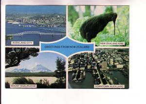 Fourview, Auckland City, Mount Ngauruhoe, Kiwi Bird, New Zealand