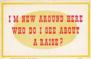 I Want A Pay Salary Wages Rise Vintage Money Comic Postcard