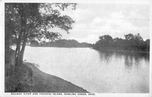 Bowling Green Ohio Maumee River Parkers Island Antique Postcard K71683