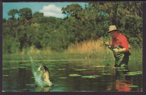 Greetings From WI,Fisherman Postcard BIN