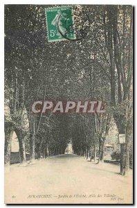 Old Postcard Avranches Jardin de l'Eveche Allee des Tilleuts