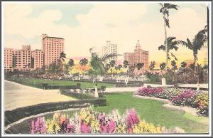 Florida Miami Skyline Hand-Colored - [FL-097]