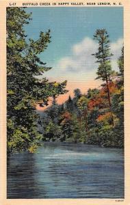 USA Buffalo Creek in Happy Valley, Near Lenoir