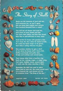The Story of Shells -