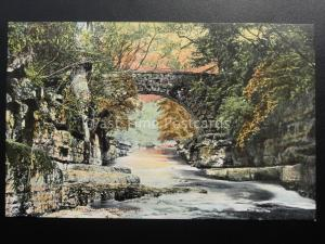 Durham DAIRY BRIDGE - ROKEBY c1903 Old Postcard by Valentine