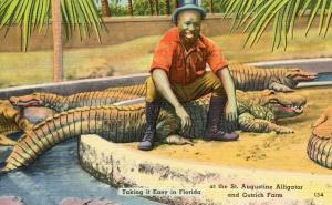 FL - St. Augustine. Alligator and Ostrich Farm