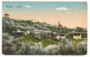 Leisnig, Germany, PU-1915, Baumblute
