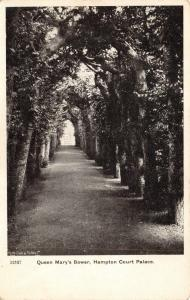 Vintage London Postcard, Queen Mary's Bower, Hampton court Palace X68