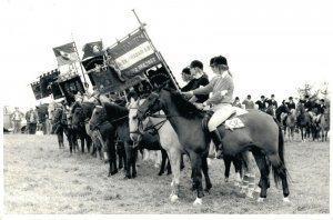 Hippique sport horses group horse riders flag parade 1974 RPPC 03.95