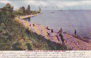 Minnesota Duluth Lakeside Scene At Lester Park 1906