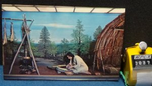 STD Vintage Ohio Woodland Indians Diorama Western Reserve Historical Society Cle