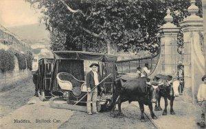 Portugal Madeira Bullock Car postcard
