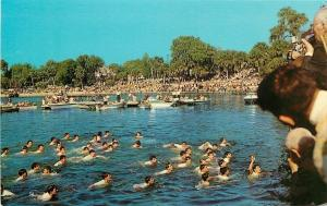 Tarpon Springs FL~Boys Retrieve Cross from Spring Bayou~Epiphany Ceremony~1968