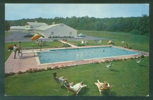 Ashford Motel CONNECTICUT Swimming Pool CT Hotel Postcard