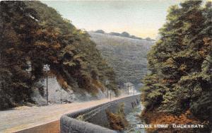 DULESGATE  RAMS LUMB LANCASHIRE UK~ROSSENDALE SERIES #256 POSTCARD 1909