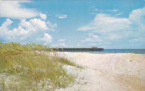 Sand Dunes, Myrtle Beach State Park Pier, Myrtle Beach, South Carolina ,'40-60s