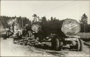 Logging Trucks Lumber Industry Highway 101 California Redwoods RPPC