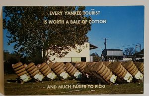 Vintage Postcard Greetings from Dixie cotton bales Mississippi 1984 cotton bales