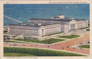 Illinois Chicago Field Museum Of Natural History 1936 Curteich