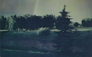 View of River, Saratoga Inn, SARATOGA, Wyoming, 40-60's