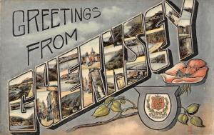 BR81853 greetings from   guernsey postcard   uk