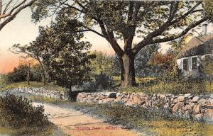 Wilton New Hampshire~Robins Nest~Country Cottage~Stone Path Wall~1909 Postcard
