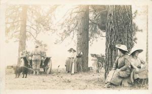 Auto Megaphone C-1910 Western Women RPPC Photo Postcard Pine Tress 189