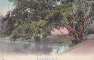 Botanical Gardens Singapore Antique Postcard