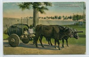 Water Seller Ox Wagon Cuba 1910c postcard