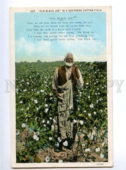 139709 USA Old Black Joe in Southern Cotton Field Vintage PC