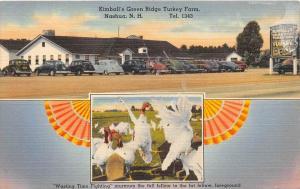 8054   NH Nashua     Kimball´s Green Ridge Turkey Farm and Restaurant