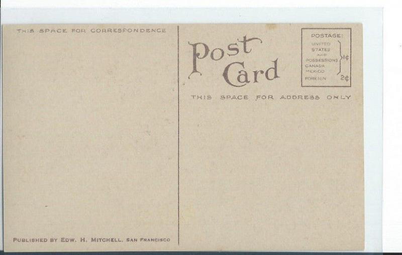 Vintage Rare Postcard 3198 Hell Gate Rogue River Oregon Edw. Mitchell San F # 14