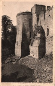 Goodrich Castle,Herefordshire,England,UK BIN
