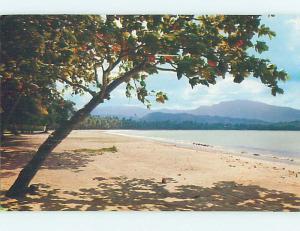 Pre-1980 LUQUILLO BEACH IN EL YUNQUE Rio Grande Puerto Rico PR M7457