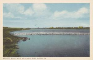 The Bore , Salmon River , TRURO, Nova Scotia , Canada , 30-40s