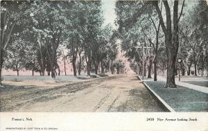 c1906 Printed Postcard; Nye Ave Street Scene, Fremont NE Dodge County Unposted