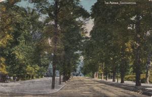The Avenue, Lined-Up Trees, SOUTHAMPTON (Hampshire), England, UK, 1900-1910s