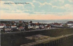 Maine Old Orchard General View