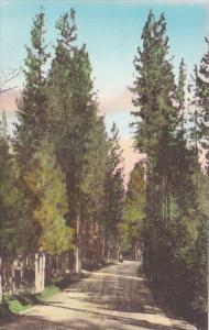 California Adams State Highway 29 At Lch Lomond Resort And Subdivision Lake C...
