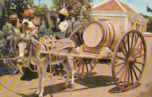 Curacao FWater Vendor With Donkey and Cart