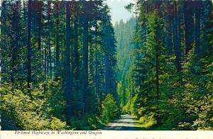 Fir Lined Highways Pacific Northwest Washington Oregon pm 1975 Postcard