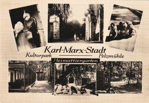 RP; KARL-MARX-STADT, Germany, 1940s ; Zoo