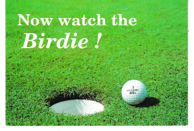 cPost Card  Golf / Comic Now watch the Birdie! Dennis Print & Publishing S054091