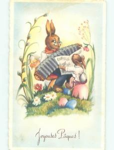 foreign Old Postcard HUMANIZED RABBIT PLAYS ACCORDION MUSIC AT EASTER AC2859