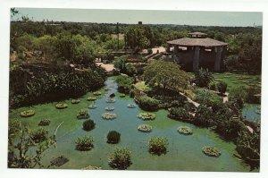 Postcard Chinese Sunken Garden  San Antonio TX PC12 8