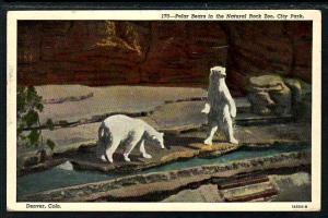 Polar Bears Natural Rock Zoo Denver CO Postcard 5280