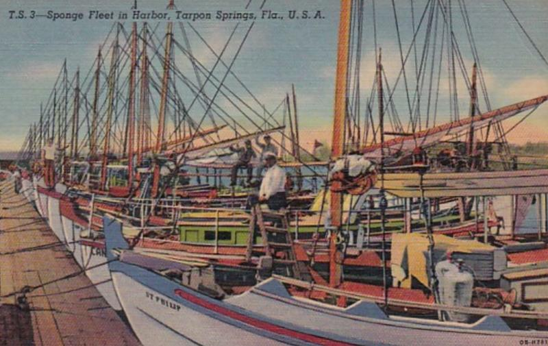 Florida Tarpon Springs Sponge Fleet In Harbor Curteich
