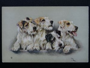 Dog Portrait showing four WIRE-HAIR FOX TERRIERS Old Postcard by Vivian Mansell