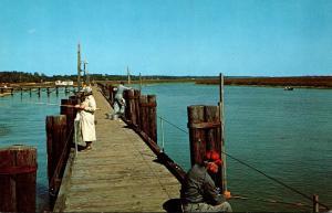 South Carolina Murrells Inlet Fishing On The Pier